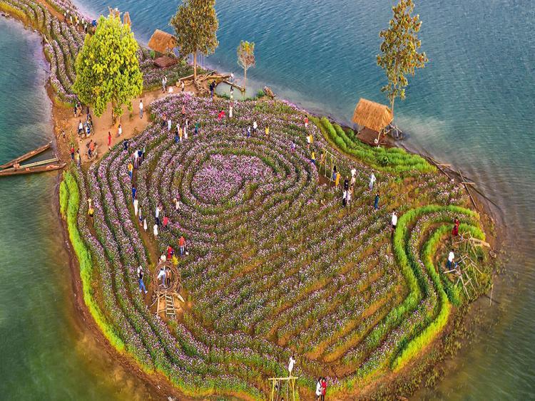 Đảo hoa Kon Trang Long Loi - Có nơi nào đẹp hơn?